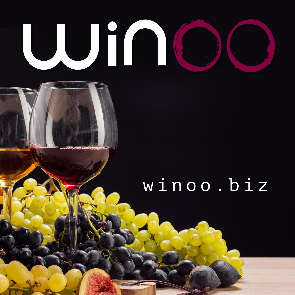 winoo-04